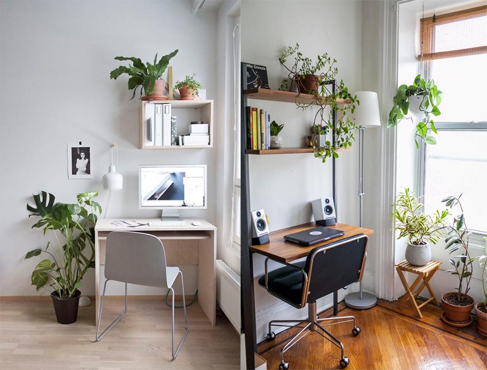 Eco design 2018 correspond parfaitement au concept de mode de vie sain moderne.